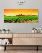 Panoramic Grape Fields Canvas Wall Art