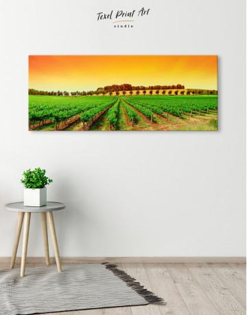 Panoramic Grape Fields Canvas Wall Art - image 4
