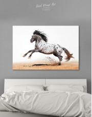 Appaloosa Horse Canvas Wall Art