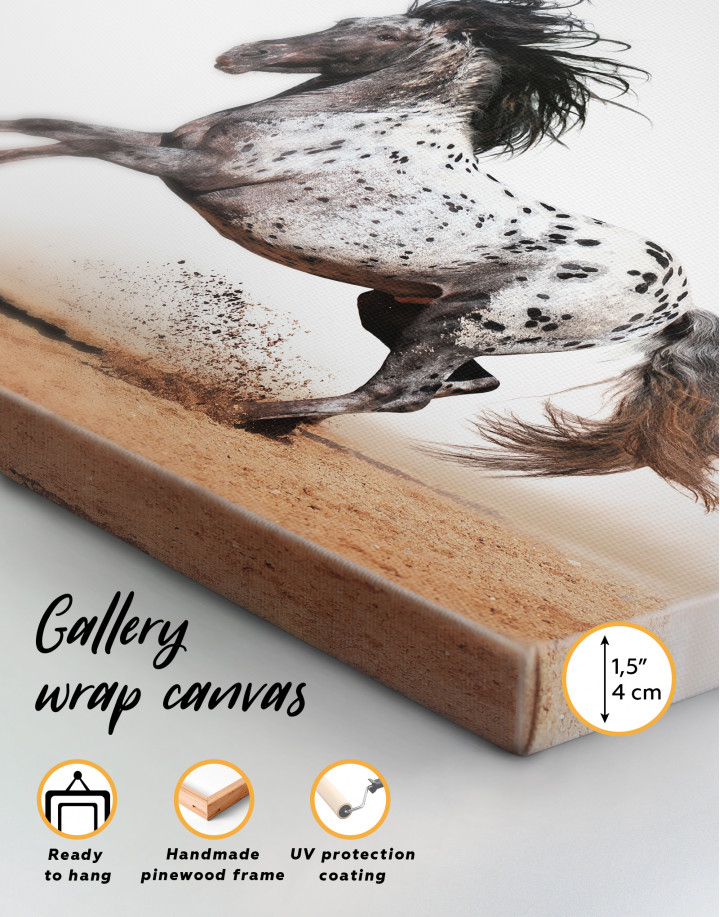 Appaloosa Horse Canvas Wall Art - Image 2