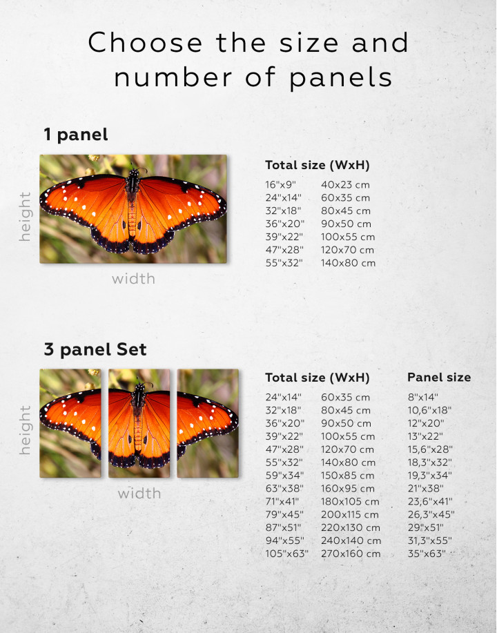 Butterfly with Spread Wings Canvas Wall Art - Image 2