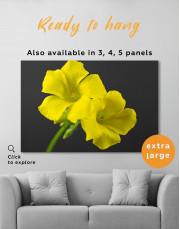 Yellow Primrose Canvas Wall Art