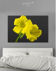 Yellow Primrose Canvas Wall Art - Image 4