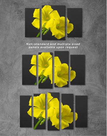 Yellow Primrose Canvas Wall Art - image 1