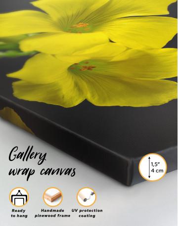 Yellow Primrose Canvas Wall Art - image 5