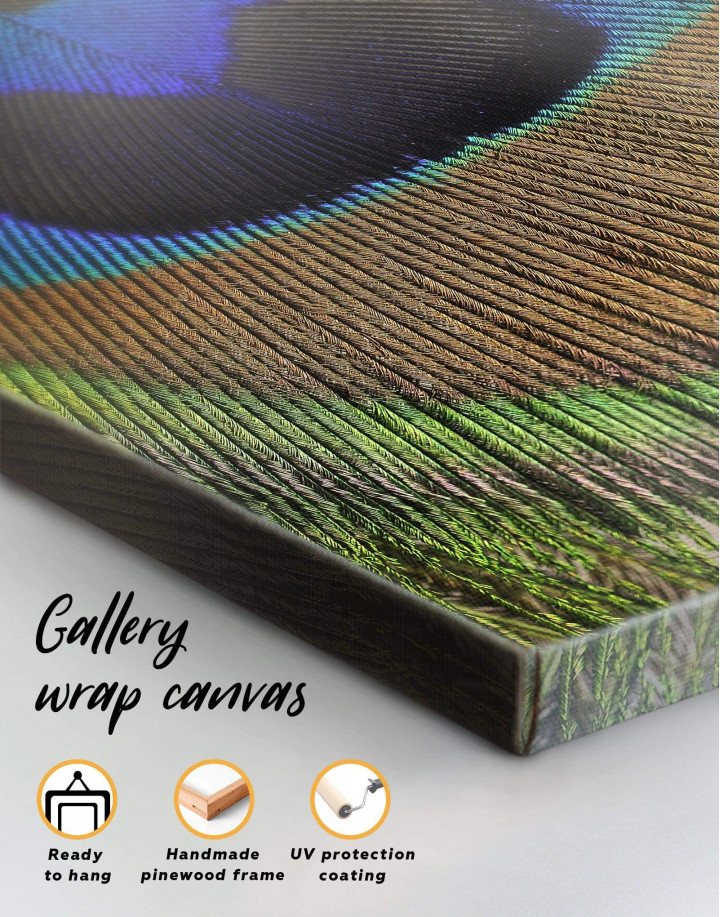 Macro Peacock Feather Canvas Wall Art - Image 1