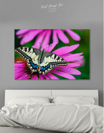 Old World Swallowtail Butterfly Canvas Wall Art