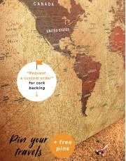 Rustic Travel Pushpin World Map Canvas Wall Art - Image 4