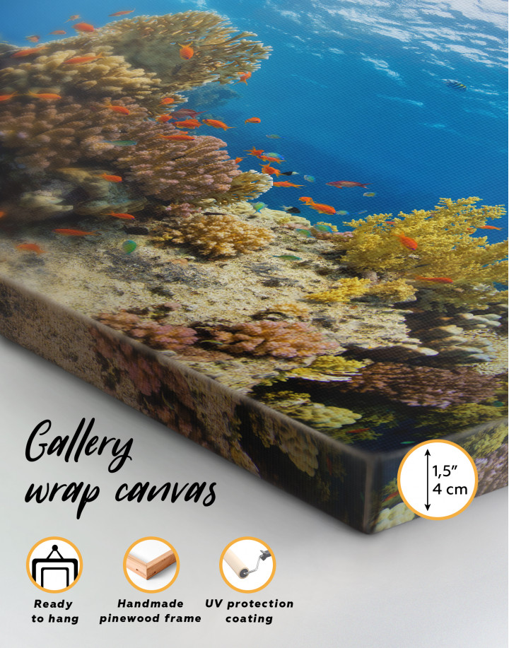 Underwater Coral Canvas Wall Art - Image 1