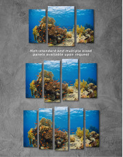 Underwater Coral Canvas Wall Art - Image 3