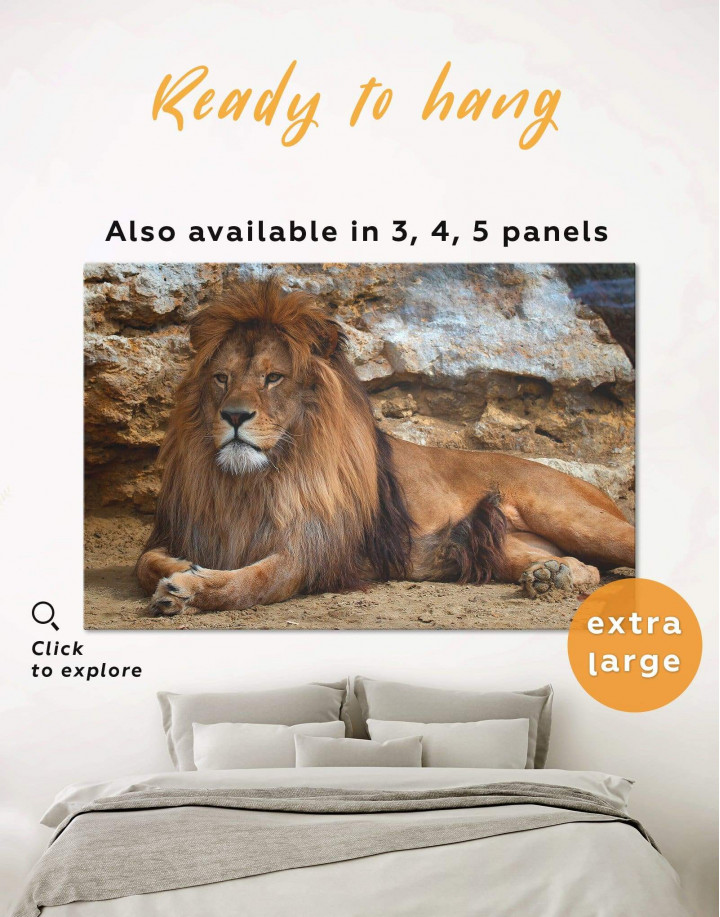 Wild Lion Canvas Wall Art - Image 0