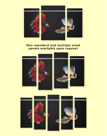 Siamese Fighting Fishes Betta Canvas Wall Art - image 1