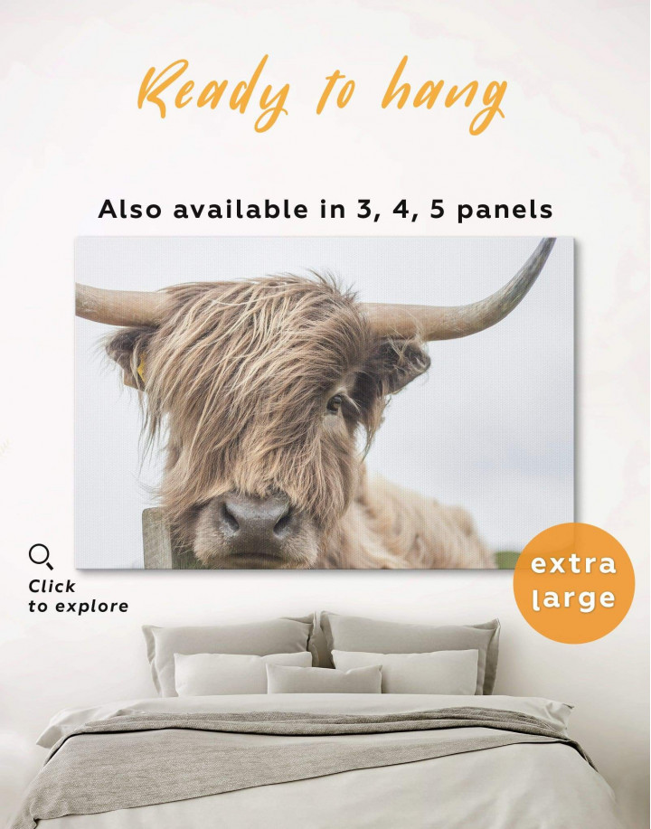 Highland Cow Canvas Wall Art - Image 0