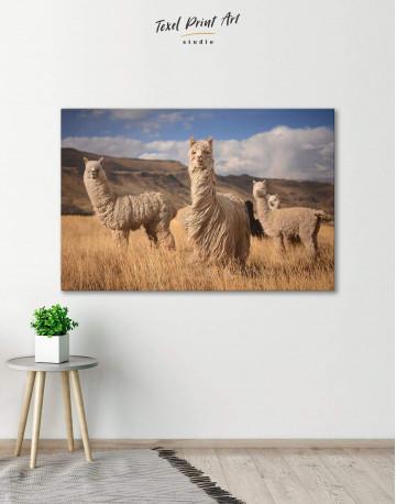 Wild Llamas Canvas Wall Art - image 1
