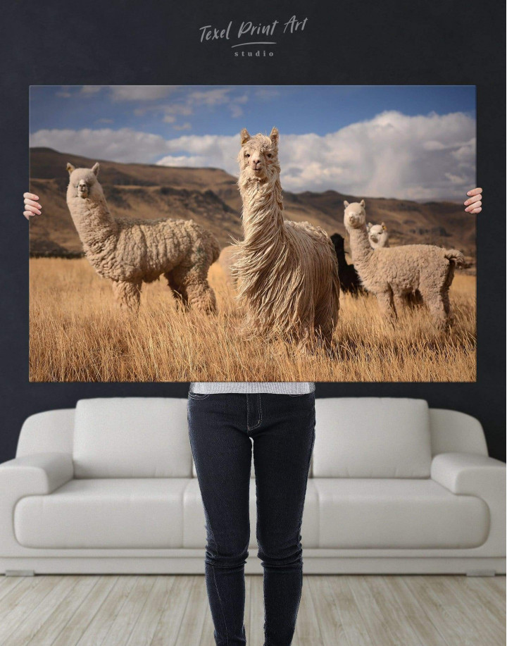 Wild Llamas Canvas Wall Art - Image 2