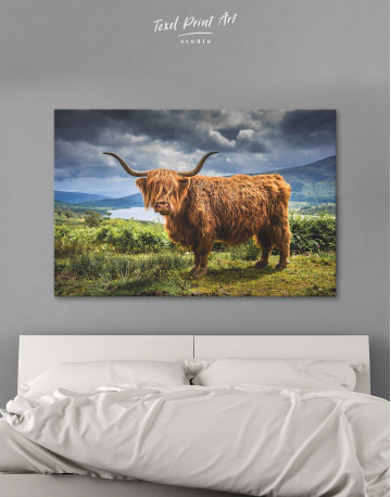 Highland Cow on Pasture Canvas Wall Art