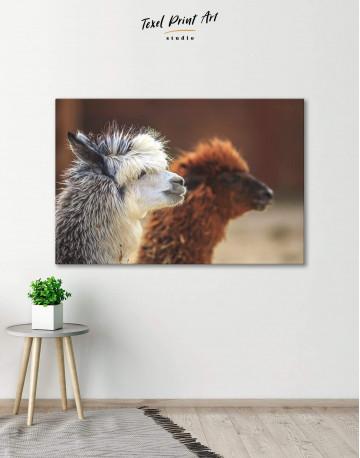 Llama Canvas Wall Art