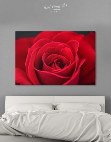 Red Rose Canvas Wall Art