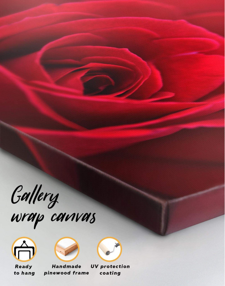 Red Rose Canvas Wall Art - Image 5