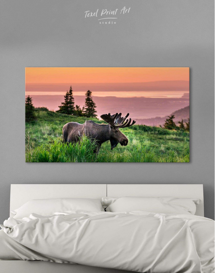 Wild Moose Canvas Wall Art - Image 0