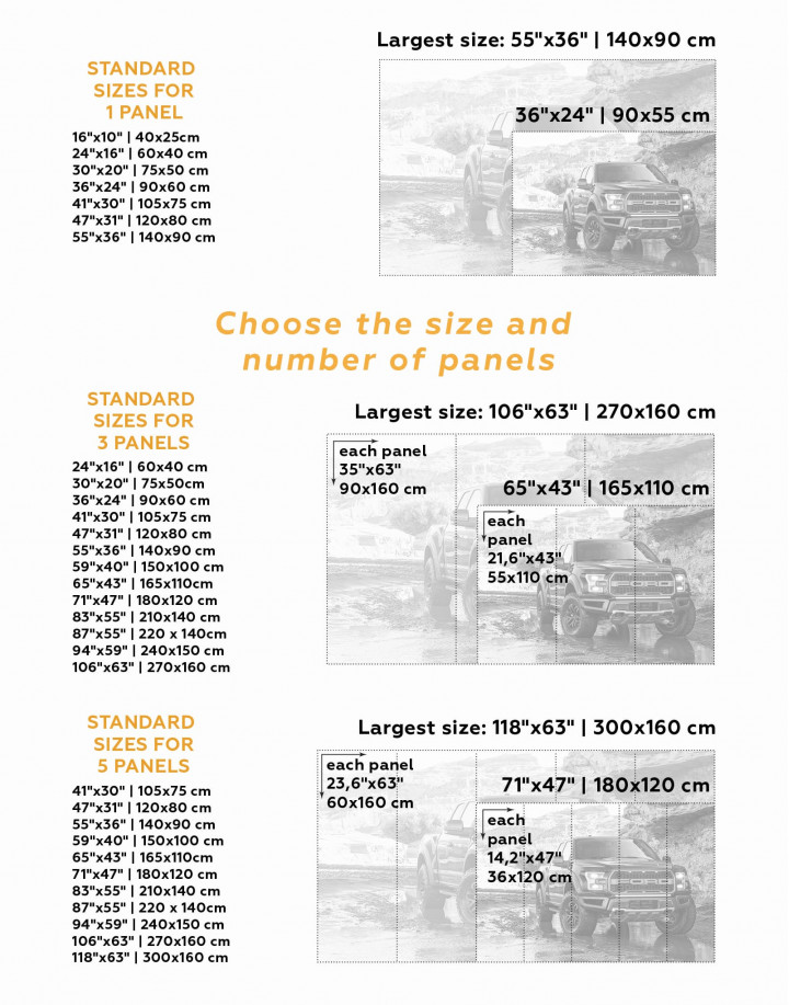 2017 Ford F-150 Raptor Canvas Wall Art - Image 3