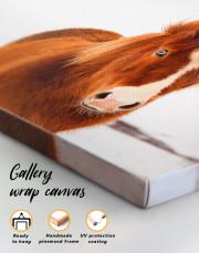 Icelandic Horse Canvas Wall Art - Image 1