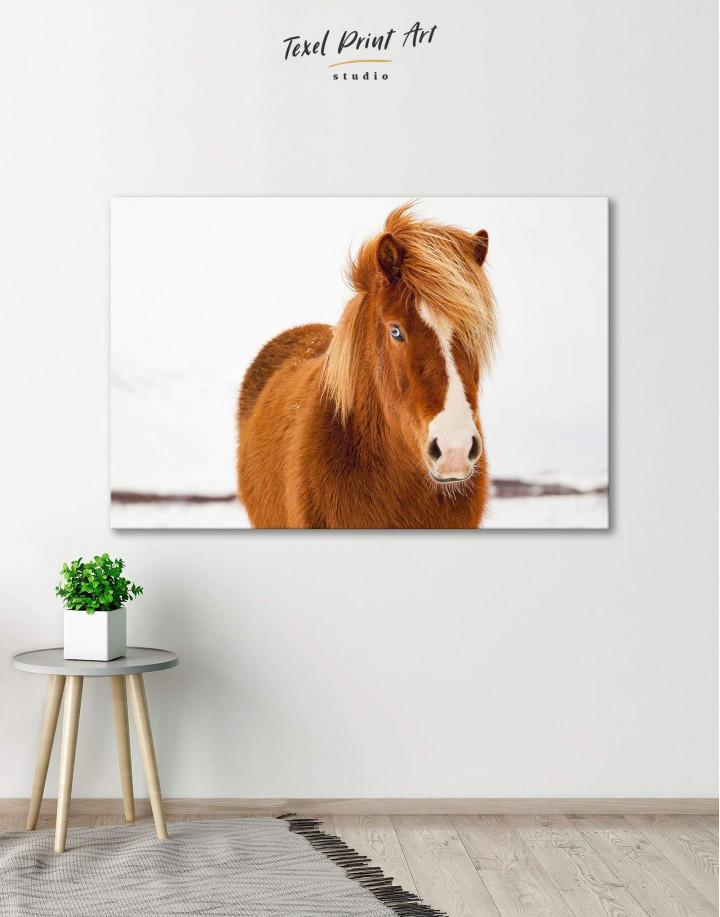 Icelandic Horse Canvas Wall Art - Image 0