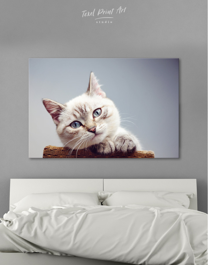 Cute Kitten Canvas Wall Art