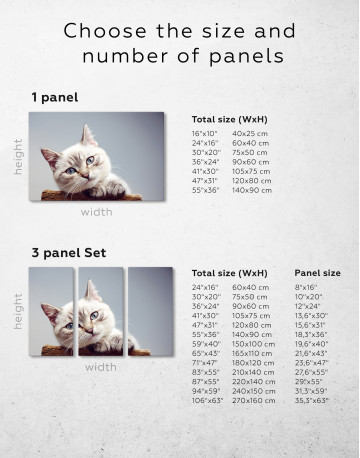 Cute Kitten Canvas Wall Art - image 7