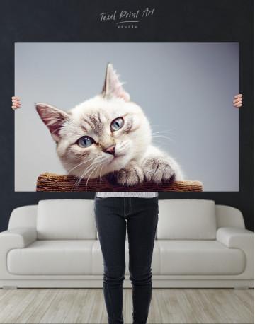 Cute Kitten Canvas Wall Art - image 10