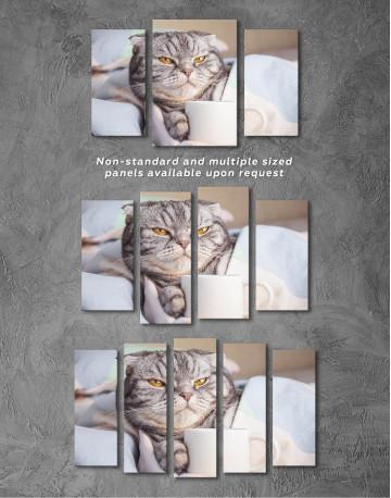 Cute Scottish fold Canvas Wall Art - image 3