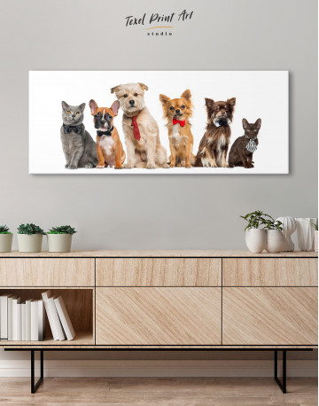 Cute Cats and Dogs Canvas Wall Art