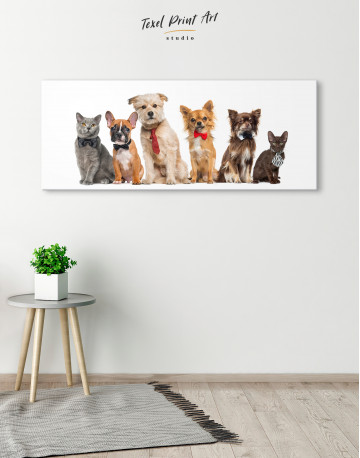 Cute Cats and Dogs Canvas Wall Art - image 3