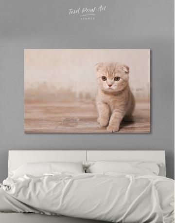 Tan Scottish Fold Kitten Canvas Wall Art