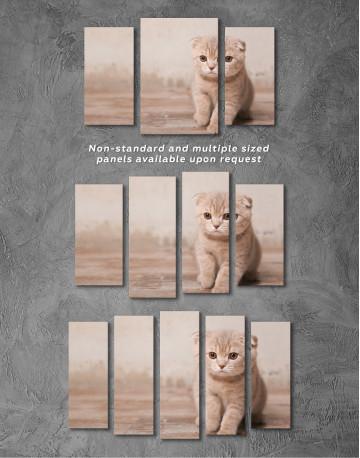Tan Scottish Fold Kitten Canvas Wall Art - image 5