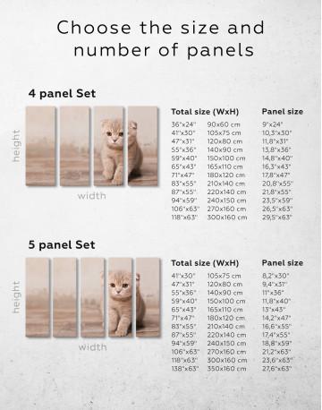 Tan Scottish Fold Kitten Canvas Wall Art - image 9