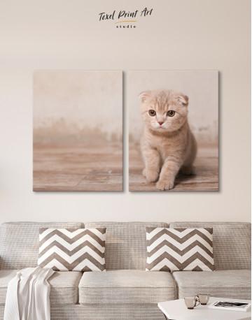 Tan Scottish Fold Kitten Canvas Wall Art - image 10