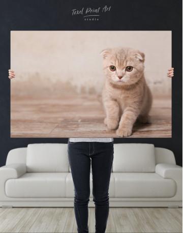 Tan Scottish Fold Kitten Canvas Wall Art - image 1