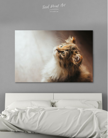 Little Calico Cat Canvas Wall Art
