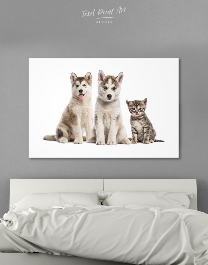 Young Huskies and Kitten Canvas Wall Art