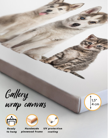 Young Huskies and Kitten Canvas Wall Art - image 8
