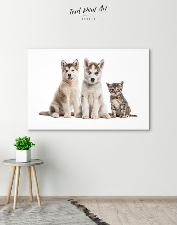 Young Huskies and Kitten Canvas Wall Art - image 2