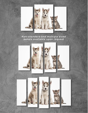 Young Huskies and Kitten Canvas Wall Art - image 3