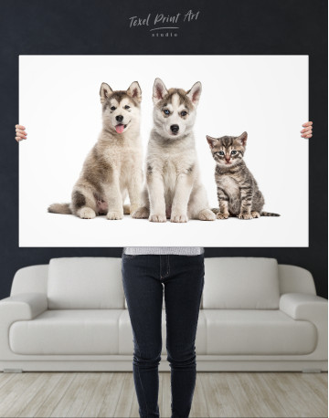 Young Huskies and Kitten Canvas Wall Art - image 10