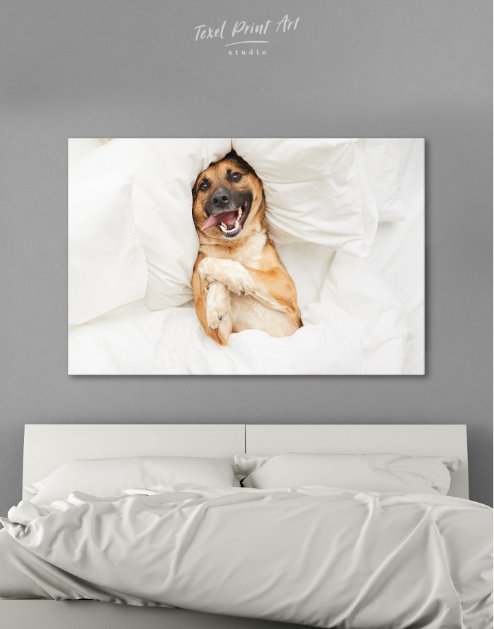 Happy Dog in Bed Canvas Wall Art