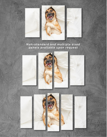 Happy Dog in Bed Canvas Wall Art - image 5