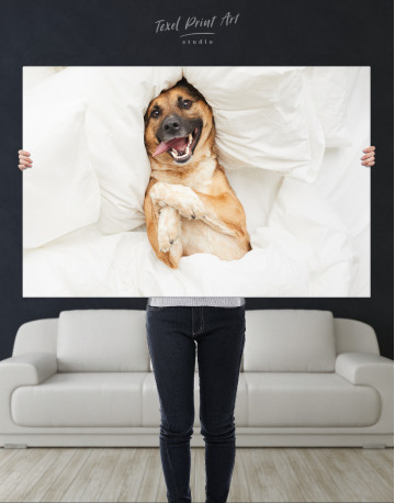 Happy Dog in Bed Canvas Wall Art - image 1