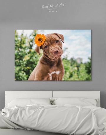 Cute Brown Labrador Puppy Canvas Wall Art