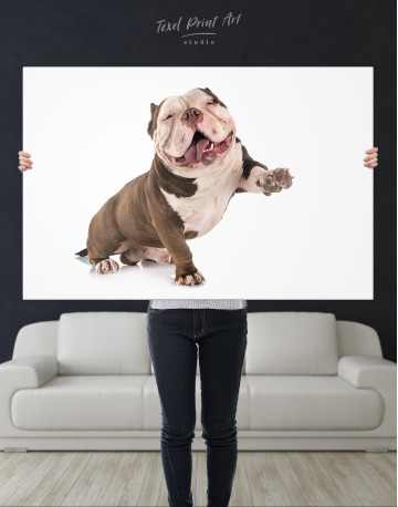 Smiling American Bully Canvas Wall Art - image 1