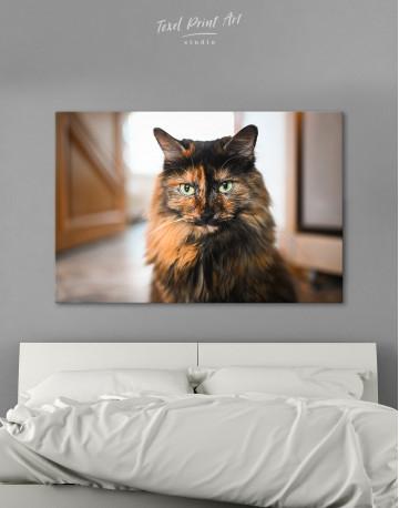 Fluffy Black Calico Cat Canvas Wall Art
